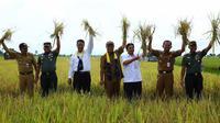 Kementan proyeksikan lahan rawa Kalimantan Selatan sebagai lumbung pangan di luar Jawa.