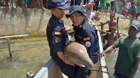 KKP melaksanakan pelepasliaran spesies dilindungi dugong di perairan Distrik Seget, Kabupaten Sorong, Papua Barat, Senin (18/3/2019).