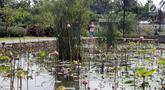 Warga berjalan-jalan di kawasan Taman Piknik, Jakarta, Minggu (20/1). Taman seluas 1 hektar di Jalan Manunggal II, Cipinang Melayu, Jakarta Timur ini menjadi salah satu taman baru milik Pemprov DKI Jakarta untuk warga. (Liputan6.com/Helmi Fithriansyah)