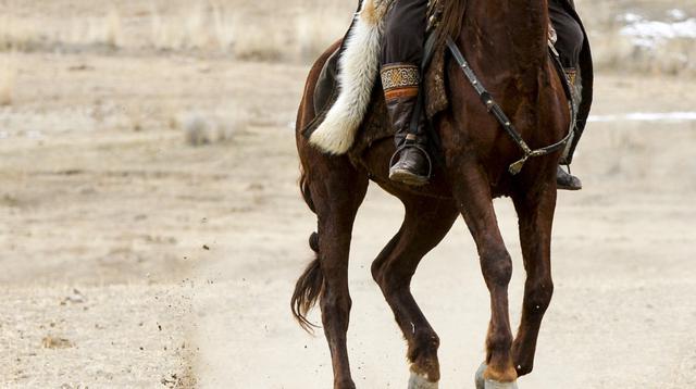 """Seorang pria Kirgistan memegang elang emas selama festival berburu """"Salburun"""" di Tuura-Suu, desa kecil di antara pegunungan di Bishkek, Kyrgyzstan, Selasa (23/2/2021). Salburun berasal dari tradisi nomaden berburu dan melindungi penggembala dari predator seperti serigala. (AP Photo/Vladimir Voronin)"""