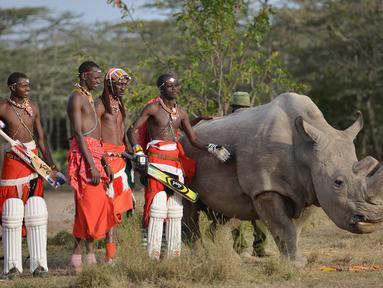 Suku Maasai foto bersama dengan seekor badak putih setelah pertandingan amal kriket di kaki Gunung Kenya (18/6). Pertandingan amal ini digelar untuk meningkatkan kesadaran akan nasib badak putih yang hampir punah. (AFP Phoo/Tony Karumba)