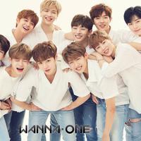 Kelakuan para penggemar fanatik atau yang biasa disebut sasaeng yang membuntuti Wanna One semakin para saja. Tak hanya nongkrong di depan kantor agensi Wanna One, YMC Entertainment. (Foto: Allkpop.com)