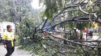 Pohon tumbang di Jalan Abdullah bin Nuh, Kota Bogor, Jawa Barat, Sabtu (23/2/2019) sore. (Liputan6.com/Achmad Sudarno)