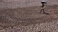 Ilustrasi gelombang panas (AFP)