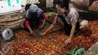 Pedagang menimbang cabai untuk di jual di pasar di Jakarta, Senin (20/2).  Kementan tidak akan mengambil langkah untuk mengimpor cabe dan bawang. Walau pun saat ini, harga cabe dan bawang mengalami keniakan. (Liputan6.com/Angga Yunair)