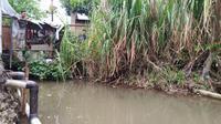 Aliran Kali Cibanten, Kelurahan Loji, Kota Bogor yang menjadi lokasi penampakan buaya. (Liputan6.com/Achmad Sudarno)