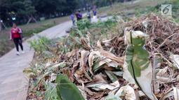 Kondisi tanaman yang ada di sekitar Hutan Kota GBK, Jakarta, Selasa (2/7/2019). Kurangnya perawatan berakibat rusaknya beberapa tanaman yang ada di area Hutan Kota GBK. (Liputan6.com/Helmi Fithriansyah)