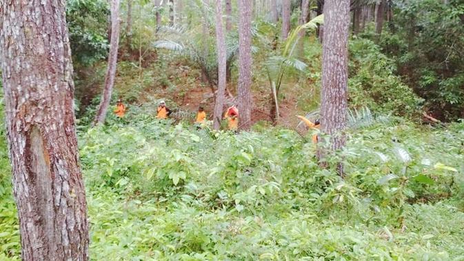 Pemburu Anoa di Hutan Kolaka Diduga Raib Diculik Jin (Liputan6.com/Ahmad Akbar Fua)