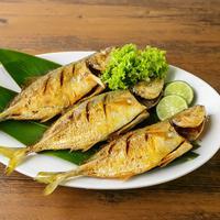 ilustrasi ikan kembung goreng/copyright by yogi hadijaya (Shutterstock)