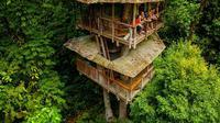 Sinergi dengan Alam, Hotel di Kosta Rika Berkonsep Rumah Pohon (Sumber. Brightsiide.me)
