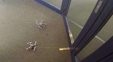 Drone Lebah