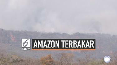 Hutan amazon di Brasil masih terbakar hebat di beberapa titik. Muncul kekhawatiran asap kebakaran akan memperburuk pemanasan global dan ancam kesehatan warga dunia.