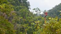 Pekerja PLN Riau memasang jaringan listrik untuk desa terpencil di Provinsi Riau. (Liputan6.com/Istimewa)