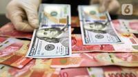 Karyawan menunjukkan uang dolar AS dan rupiah di Jakarta, Rabu (30/12/2020). Nilai tukar rupiah di pasar spot ditutup menguat 80 poin atau 0,57 persen ke level Rp 14.050 per dolar AS. (Liputan6.com/Johan Tallo)