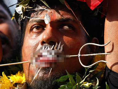 Seorang umat Hindu menusukkan besi ke pipi dan lidahnya saat Festival Thaipusam di Batu Caves, Kuala Lumpur, Malaysia, Rabu (31/1). Thaipusam merupakan perayaan untuk menghormati tuhan Hindu, Lord Murugan. (AP Photo/Sadiq Asyraf)
