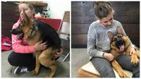 Seekor anjing dengan punggung yang lebih pendek dari normal dicintai netizen karena keramahannya.