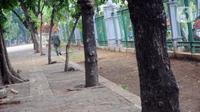 Petugas mengecek kondisi sekitar kejadian ledakan di kawasan Monumen Nasional, Jakarta, Selasa (3/12/2019).  Ledakan tersebut diduga berasal dari granat asap dan mengakibatkan dua orang anggota TNI terluka, korban langsung dievakuasi ke RSPAD Gatot Subroto Jakarta. (Liputan6.com/Helmi Fithriansyah)