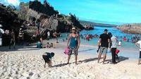 Pantai Tolanamon NTT jadi destinasi baru yang keren (Liputan6.com / Ola Keda)