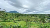 Lulu Tobing memamerkan salah satu sudut keindahan Jatiluwih yang berada di Bali (Dok.Instagram/@lutob/https://www.instagram.com/p/B7FWg8mAnpRKAjDexnCezv-N-MViIHwygqnoFU0/Komarudin)