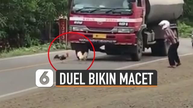 Mereka sibuk saling menyerang hingga buat truk dan kendaraan lain berhenti.