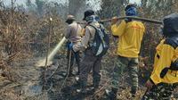 Relawan Karhutla Riau yang sudah dilatih mulai memadamkan kebakaran lahan bersama personel Polda Riau. (Liputan6.com/M Syukur)