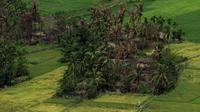 Foto udara diambil pada 27 September 2017 memperlihatkan desa yang ditinggali Rohingya di Maung Daw terbakar dan rata (YE AUNG THU / AFP)