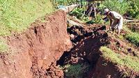 Seorang petani mencangkul di ladang yang ambles di lereng Gunung Wilis, tepatnya Desa Bodag, Kecamatan Kare, Kabupaten Madiun, Jawa Timur.(Antara)
