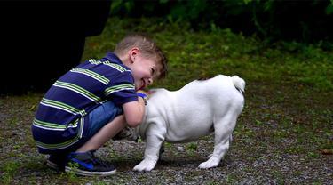 Ilustrasi Anak Bermain Bersama Anjing