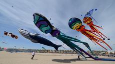 Layang-layang raksasa diterbangkan saat Festival Internacional del Viento (Festival Angin Internasional) di pantai Malvarrosa, di Valencia, Spanyol (23/4). Acara ini diikuti oleh 150 peserta dari berbagai penjuru Eropa. (AFP/Jose Jordan)