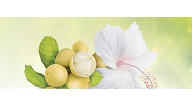 Benarkah kalau ekstrak buah langsat dan ekstrak kembang sepatu memang bisa cerahkan kulit? Temukan jawabannya di sini!