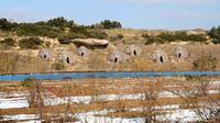Ditemukan sebuah batu dari pinggir sungai Spanyol dengan gambar yang menyerupai tenda.