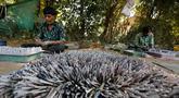 """Pekerja membuat petasan untuk festival Diwali atau Dipavali bagi umat Hindu yang akan datang, di sebuah pabrik pinggiran  Ahmadabad, Senin (22/10). Permintaan petasan di India semakin meningkat jelang perayaan Festival """"Cahaya"""" Diwali. (AP/Ajit Solanki)"""