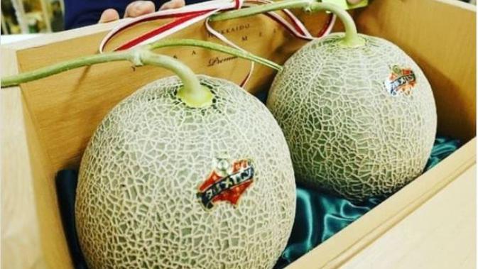 Melon Yubari Bukan Buah Termahal Lagi Karena Pandemi
