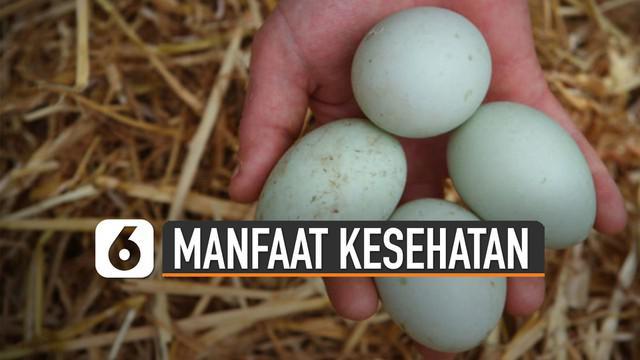 Selain bisa diolah jadi beragam makanan, telur bebek punya manfaat untuk kesehatan tubuh.