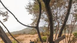Ocha juga sangat mencintai daerah asalnya yakitu Madura, Jawa Timur.  Hal itu terbukti ia selalu mengenakan baju batik khas Madura yang memang memiliki ciri khas motif flora dan fauna, serta warna yang mencolok.(Liputan6.com/IG/@ocharea)