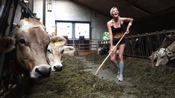 Caroline, seorang gadis petani Bavaria berpose di sebuah peternakan di Apfeldorf, Jerman Selatan, Rabu (22/6). Pemotretan gadis ini untuk sampul kalender 2017 yang juga sebagai penghormatan para petani perempuan di Bavaria. (Christof Stache/AFP)