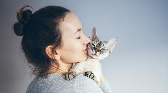Bukan Hanya Manusia, Kucing Berisiko Alami Sunburn Saat Berjemur di Bawah Jendela