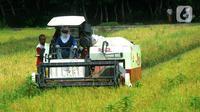 Petani memanen padi jenis IR 54 menggunakan mesin produk China di Galuh, Kulon Progo, Yogyakarta, Kamis (2/2/2020). Mesin yang disewa seharga Rp 500 ribu untuk memanen padi seluas 1.400 meter persegi itu mengefisienkan waktu, tenaga, dan modal dibandingkan tenaga manusia. (merdeka.com/Arie Basuki)