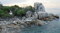 Pantai Parai Tenggiri dikelola oleh pihak swasta sehingga faktor kenyamanan dan keamanan wisatawannya sangat diperhatikan. Hal ini dapat terlihat dari lingkungan pantai yang sangat bersih dan asri. (Liputan6.com/Gempur M Surya)