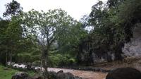 wisata sungai Cibentang dengan debit air sedang dan kondisi alam yang masih perawan, mulai dibuka Pemerintah Desa Jatisari, selaku pengelola kawasan wisata itu. (Liputan6.com/Jayadi Supriadin)