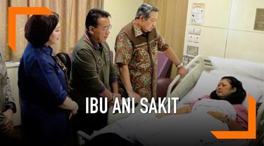 Ani Yudhoyono dirawat di rumah sakit Singapura sejak awal Februari 2019. Rabu (13/2), Susilo Bambang Yudhoyono ungkap penyakit kanker darah yang diidap istrinya.