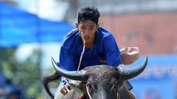 Seorang peserta berkompetisi dalam balap kerbau di Chonburi, Thailand, pada 1 Oktober 2020. Ratusan kerbau mengikuti festival balapan yang digelar setiap Oktober di kalangan petani untuk merayakan panen padi. (Xinhua/Rachen Sageamsak)