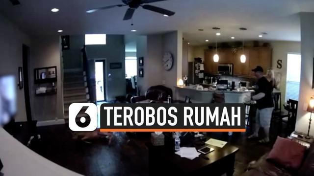 Sebuah keluarga terkejut setelah seekor rusa masuk ke rumah mereka dengan cara menerobos pintu depan. Mereka menghubungi pihak berwenang terkait insiden tersebut.