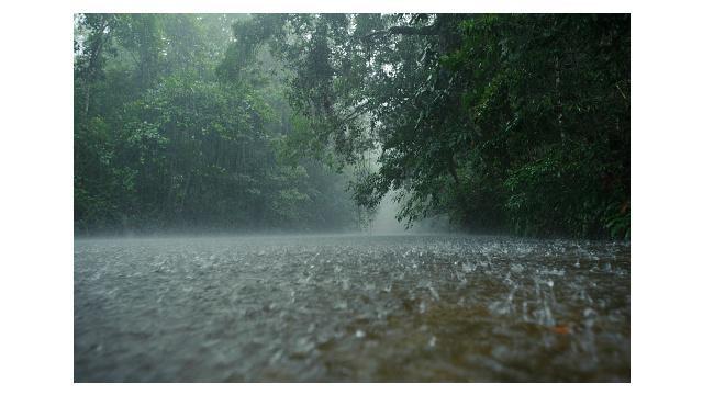 Anda yang bertempat tinggal di Jakarta, Bogor, Depok, Tangerang, Bekasi (Jabodetabek) dan merencanakan ke luar rumah atau pulang kerja, ada baiknya menyiapkan payung atau jas hujan. Informasi yang dilansir Badan Meteorologi, Klimatologi, dan Geofisika (BM