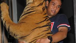 Petugas membawa harimau Sumatera yang di awetkan sebelum dibakar di Banda Aceh, (22/5). Kementerian Kehutanan Indonesia memusnahkan barang bukti perdagangan satwa liar sebagai kampanye melawan perburuan Ilegal. (AFP/Chaideer Mahyuddin)