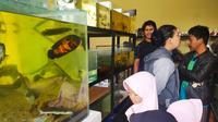 Nampak Mansyahlan, tengah melayani beberapa pengunjung yang datang ke kios ikan hiasnya yang berada di bilangan jalan  Karangpawitan, Garut, Jawa Barat. (Liputan6.com/Jayadi Supriadin)
