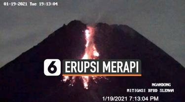 Guguran lava pijar terus keluar dari puncak Gunung Merapi. Tercatat sedikitnya 47 guguran lava pijar sejak Rabu (20/1) dini hari).