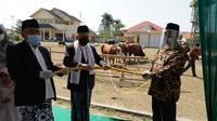 Wapres Ma'ruf Amin menyerahkan hewan kurban sapi berjenis Limosin dengan berat 878 kg kepada Ketua Panita Kurban Masjid Agung Penata Dimyathi. (Foto: Putu Merta Surya Putra)