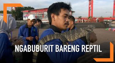 Warga Palembang lakukan ngabuburit dengan cara unik. Mereka bermain bareng aneka reptil depan Benteng Kuto Besak yang terletak di pinggir Sungai Musi.