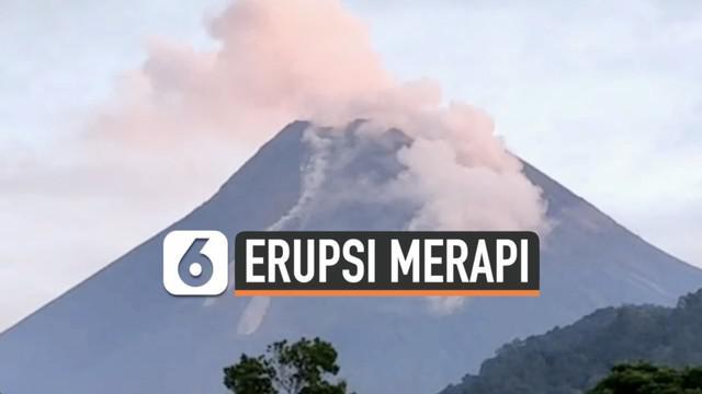 Aktivitas erupsi Gunung Merapi terpantau masih tinggi. Lebih dari 20 kali guguran lava pijar terjadi sejak Selasa (26/1) dini hari.